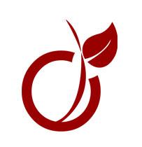 Logo Viadéo - cmcgraphiste